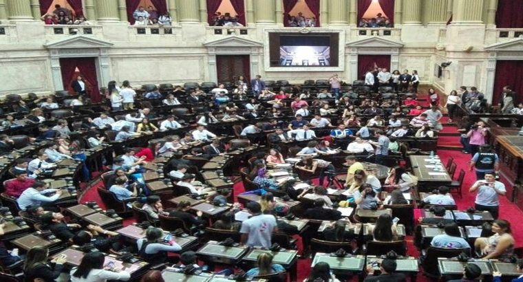 Parlamento Juvenil del Mercosur, convocatoria abierta